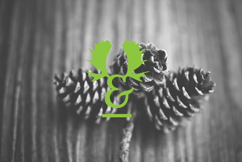 Antler bistro visual identity design nina greger proste kreski (13)
